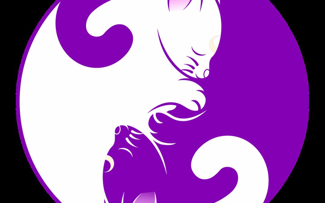 Positive attitude : La Parabole des 2 Loups